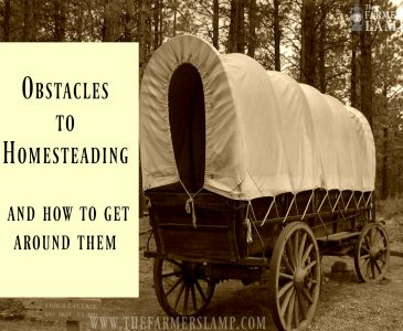 homesteading-obstacles