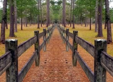 Fence on Country lane for Fence Ideas