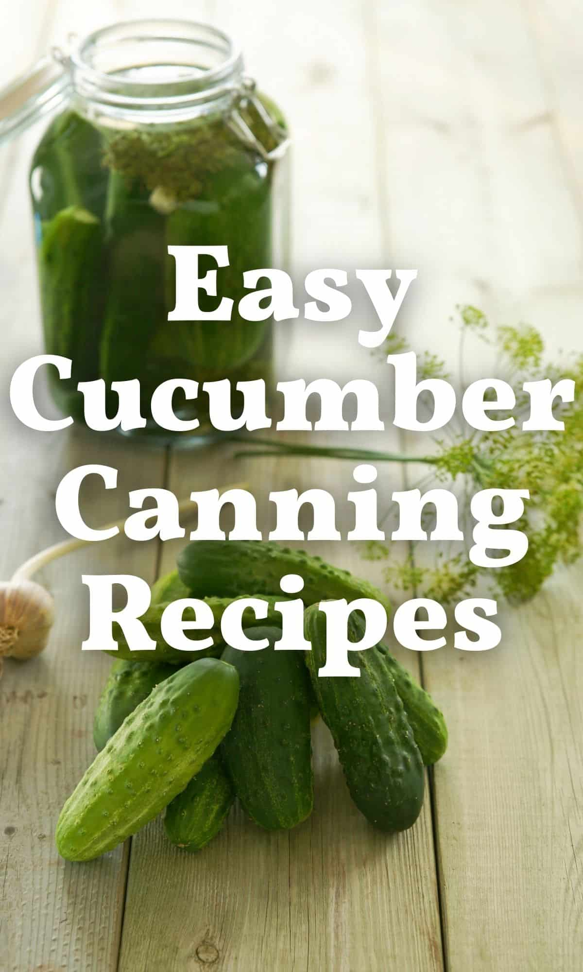 cucumbers garlic and dill for cucumber canning recipes PIN