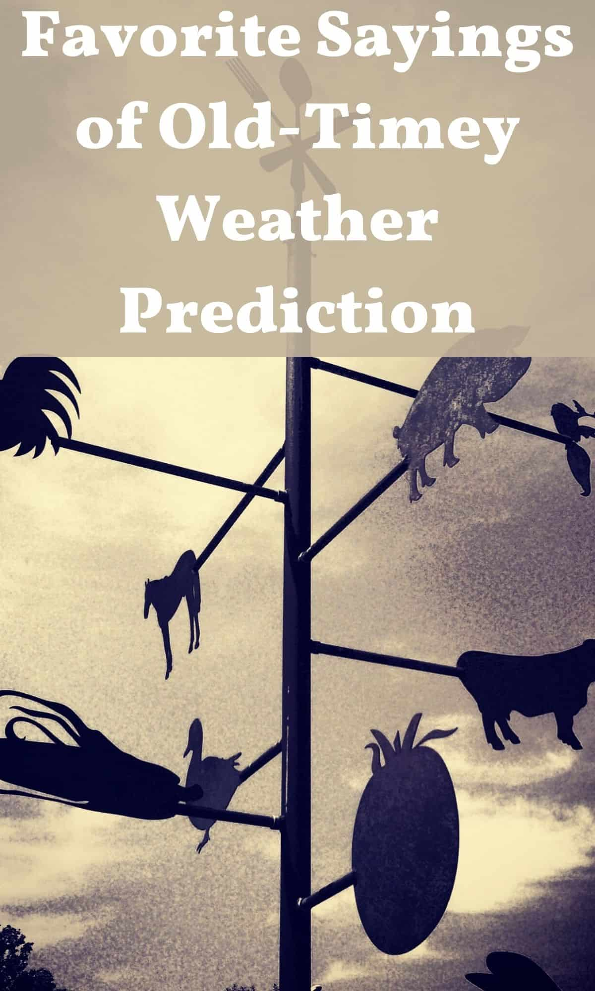old-timey weather vane for old-timey weather sayings