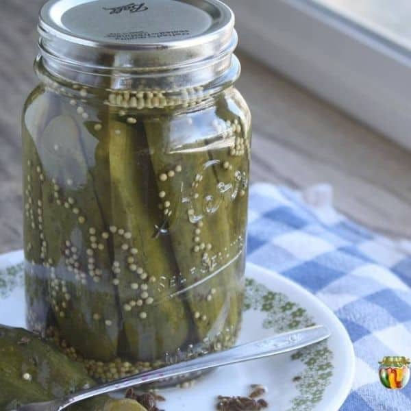 dill pickles in glass jar for cucumber canning recipes